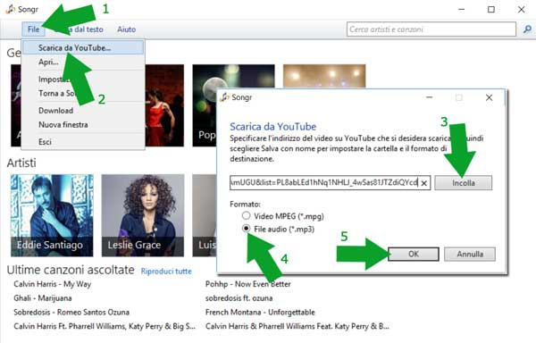 scaricare musica da Youtube Music con songr